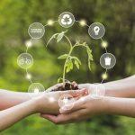 ¿Cómo fomentar un consumo responsable?